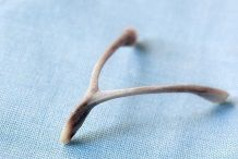 Wishbone luck meaning