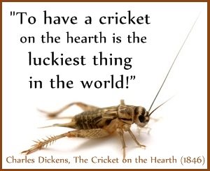 Cricket lucky Dickens