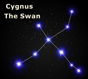 Cygnus Star Constellation