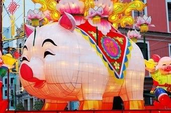 pig year Chinese zodiac
