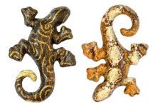 lizards symbolism