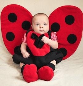 Baby Superstition Ladybug