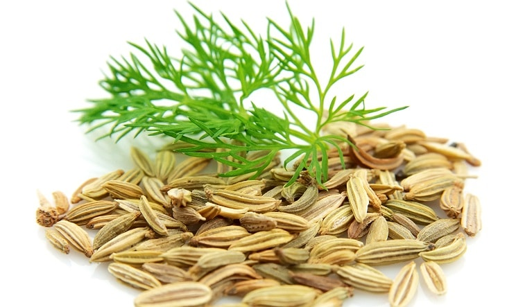 fennel seeds superstitions