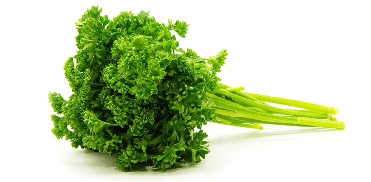 Parsley superstitions