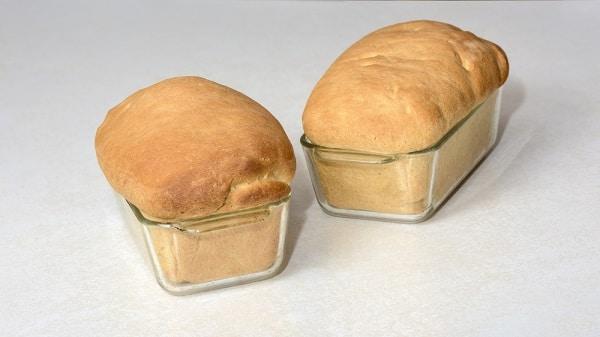 bread rising well